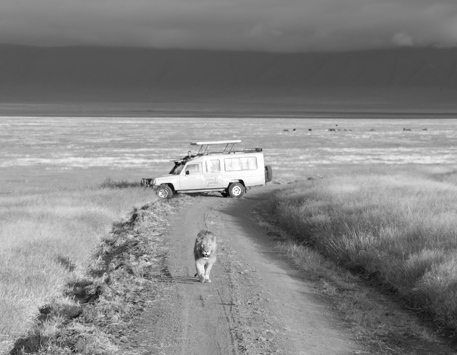 Tanzania: A Photo Story