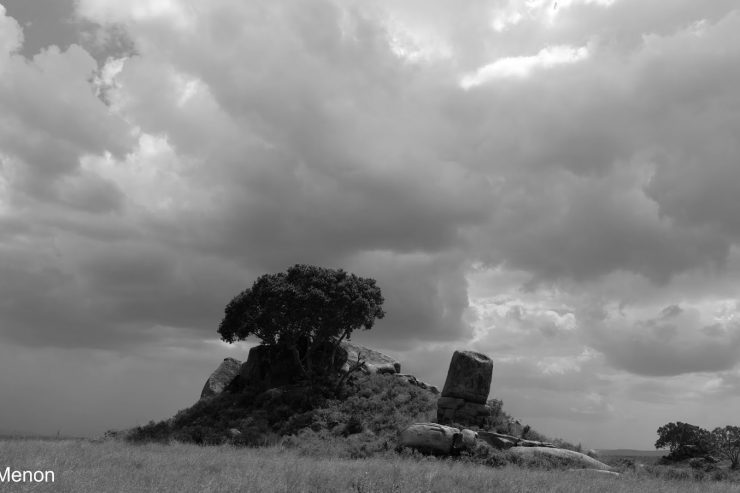 Tanzanian Diaries: The Trip Full Of Nightmares