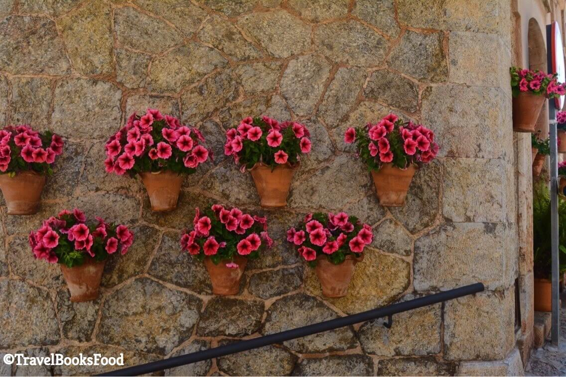 This is a photo of some flower pots on a wall in Mallorca, Spain