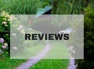 TravelBooksFood_Reviews