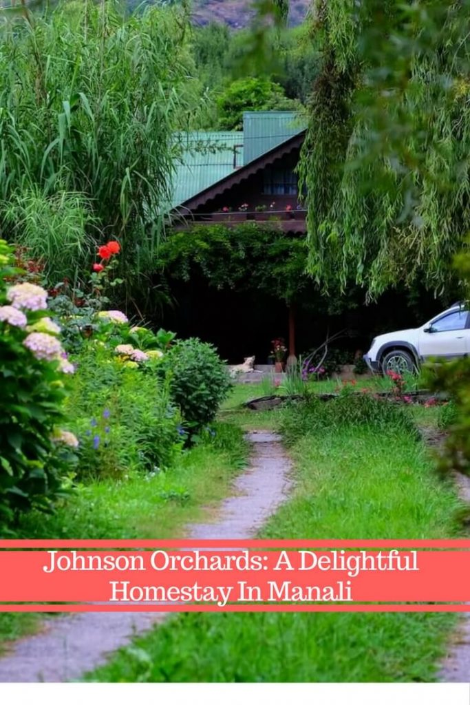 Johnson Orchards: A Delightful Homestay In Manali | During my recent trip to Himachal, India, I had a chance to stay at a charming homestay in Manali. Here I list why it is one of the best luxury cottages in Manali, India