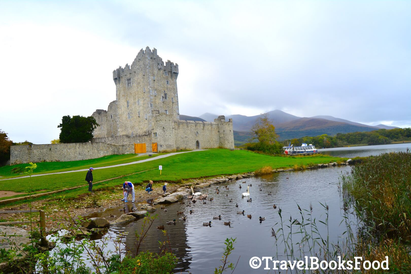 A Picture of Ross Castle in Killarney with few people feeding the swans in front of the castle