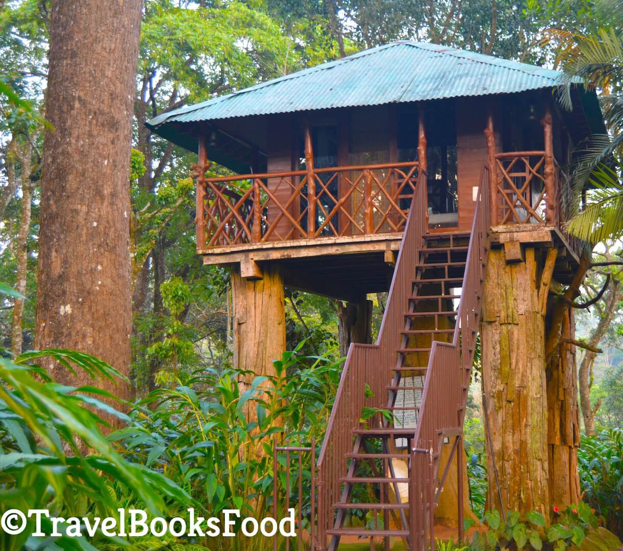 Picture of a tree house in Kerala, India