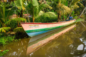 A colourful boat in the backwaters of Kerala; Kerala_Human_By_Nature_Walk_down_Memory_Lane