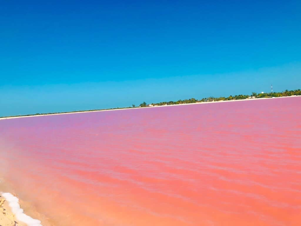 Pink lakes of Mexico