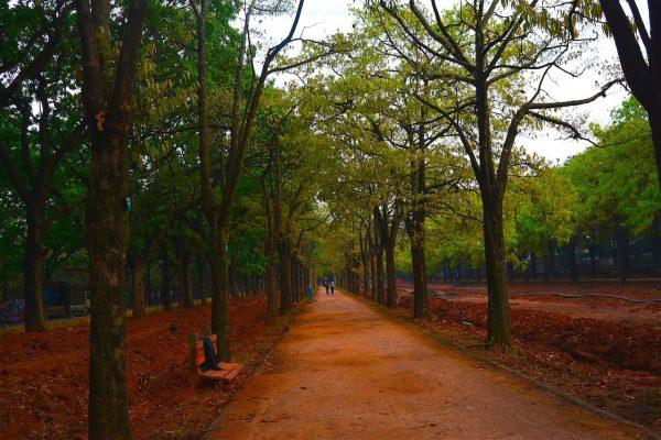 Bangalore Itinerary