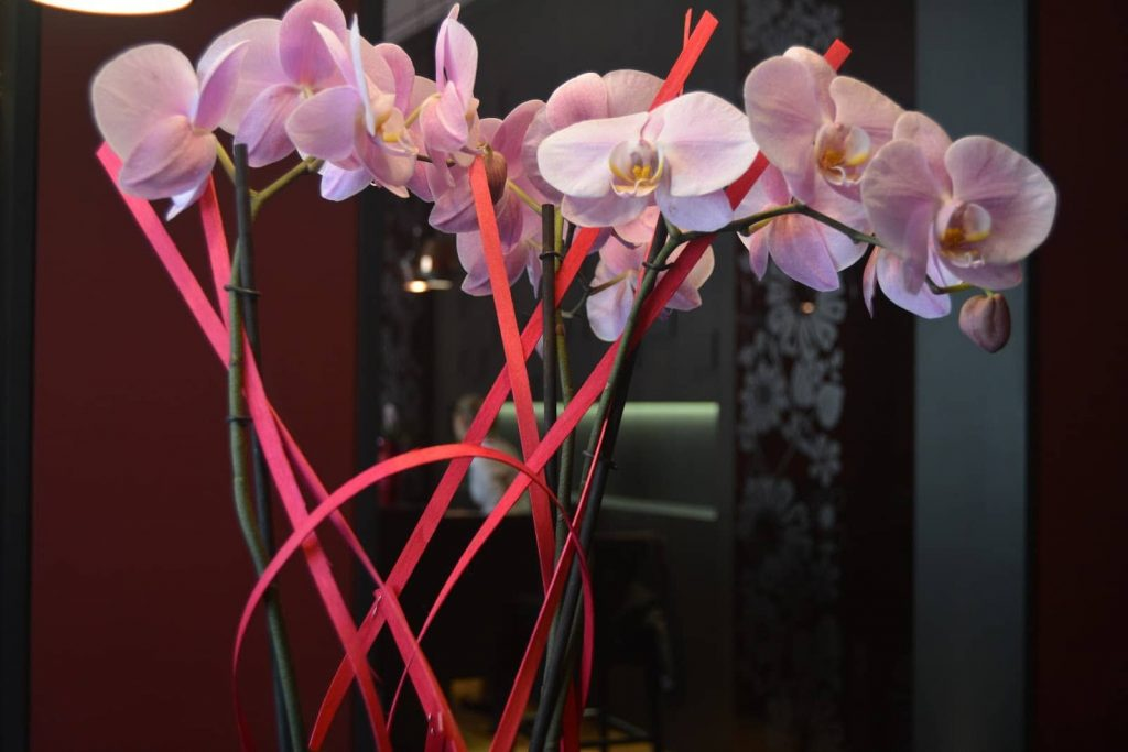 Hotel_D_Strasbourg_Flowers