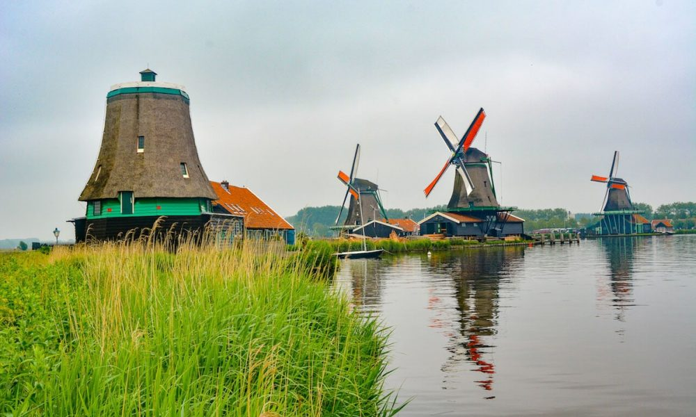 A picture of the Windmills in a village near Amsterdam overlooking green marshes and pristine waters