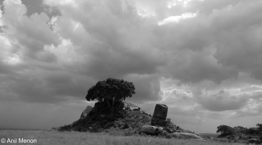 Tanzanian_Diaries_Nightmare_Trip1-1