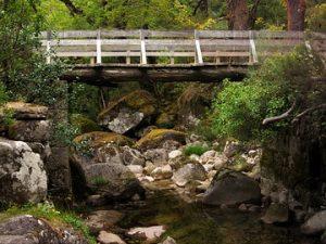 bridge-1982461_640